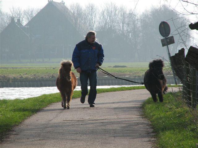 http://www.tichelwurk.nl/images/IMG_7041.JPG